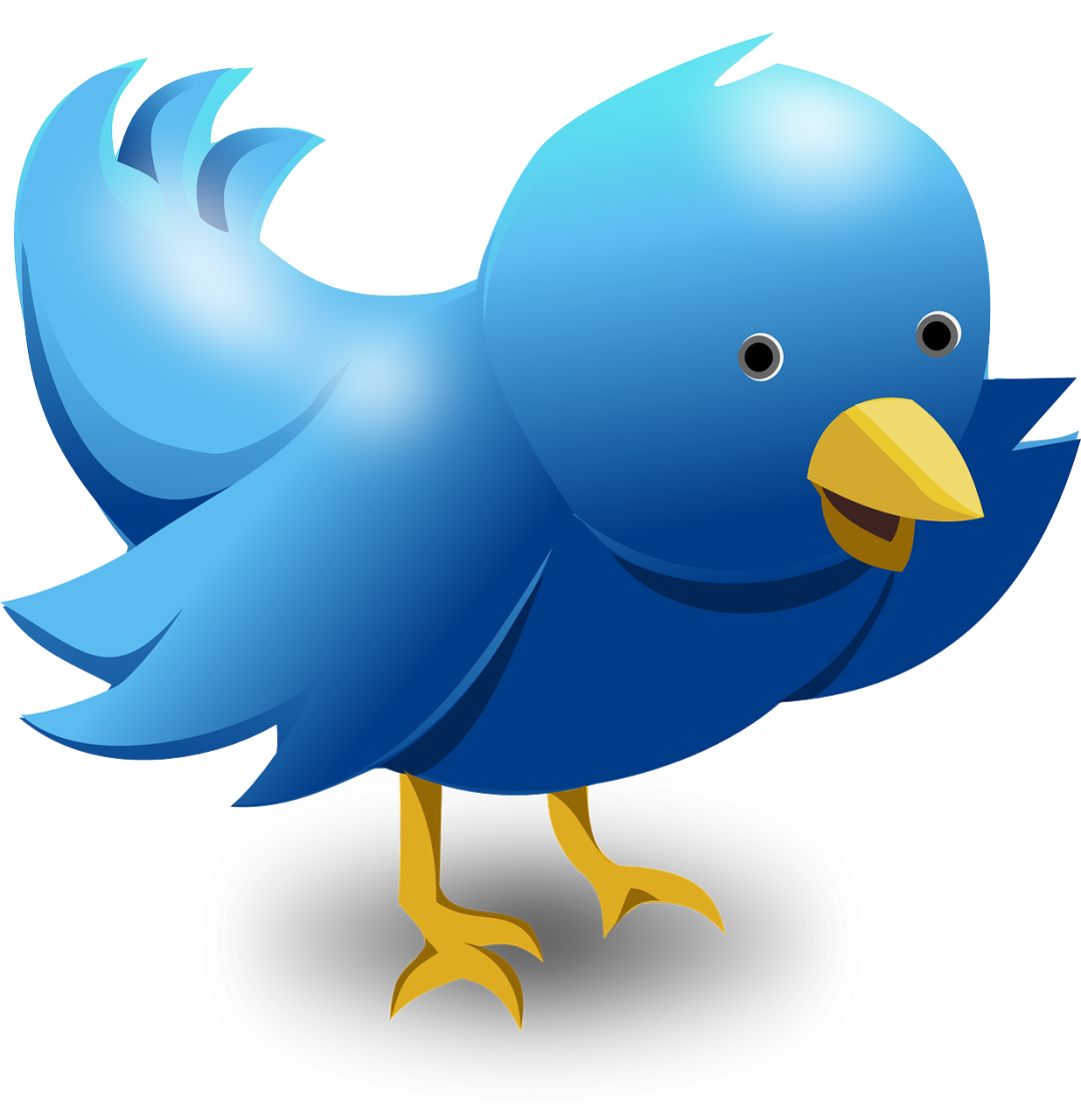 How to Become a Twitter Marketing Pro with $0 Budget
