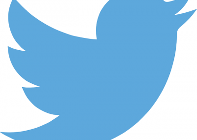 How to Utilize Twitter Marketing Strategies